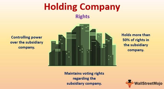 oleada va a decidir temerario  Holding Company (Parent Company) | Rights, Responsibilities, Examples