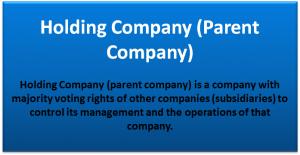 Holding Company (Parent Company)