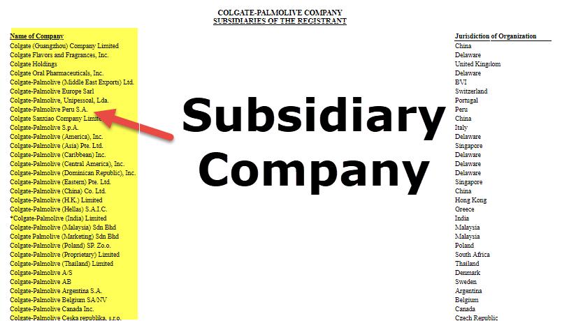 Prestigio celestial prisión  Subsidiary Company (Examples, Levels) | How does it Work?