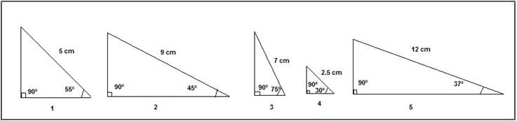 TAN Graph 1