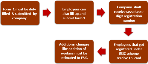 Employees' State Insurance Process