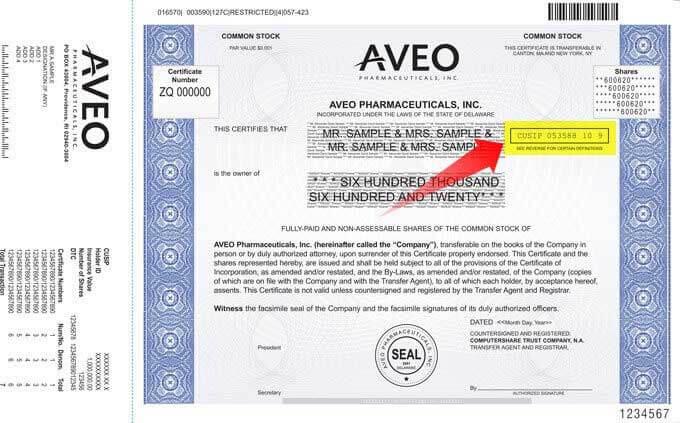 Specimen Share Certificate